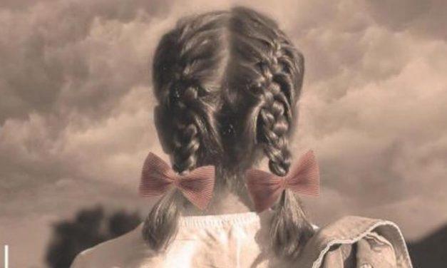 Boek gelezen: Het meisje met de vlechtjes