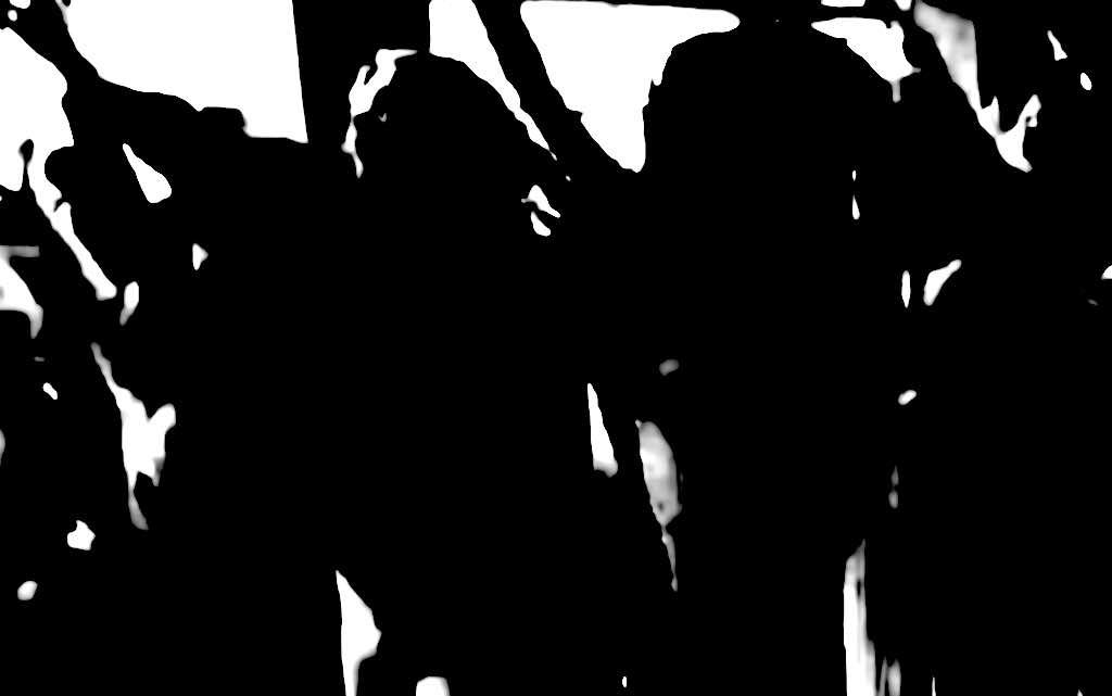Rector Zaanlands: feestje Paarse Vrijdag 'niet okay