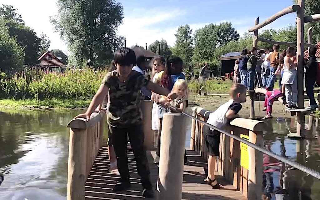 Natuurspelen in Darwinpark (video)